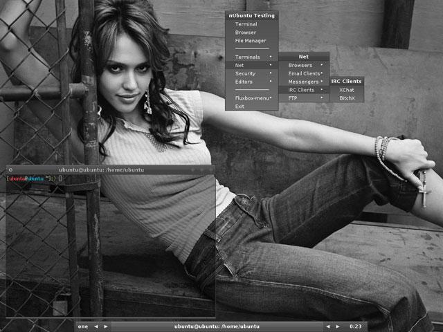 Screen 1 nUbuntu